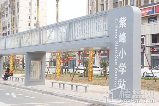 晋江紫峰里紫峰小学公交站