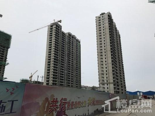 藁城东城国际实景图