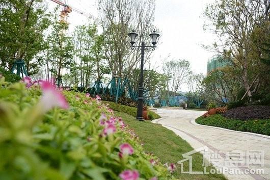 南安恒大新城园林-1