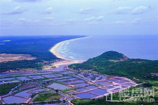东郊椰林壹号周边 铜鼓岭国家级自然保护区