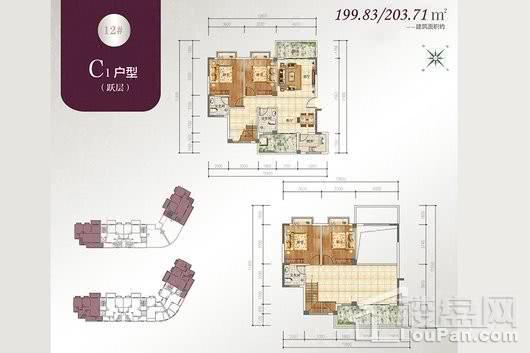 宝源花园三期户型C跃层1 4室3厅3卫1厨
