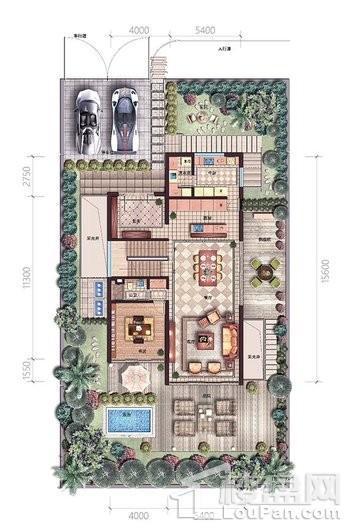 碧桂园中央半岛独栋B户型一层户型图 6室5厅7卫2厨