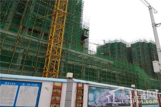 怡和·湖城大境三期实景图