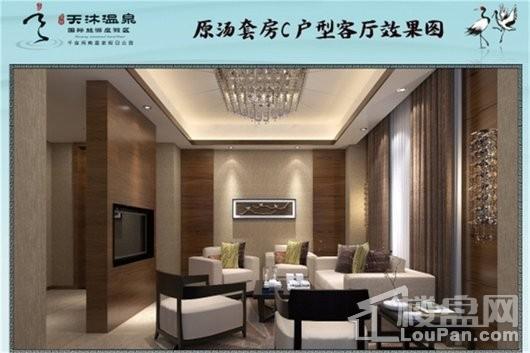 泉州天沐温泉国际旅游度假区C户型客厅