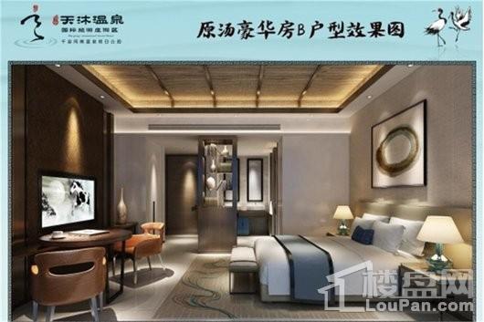 泉州天沐温泉国际旅游度假区B户型
