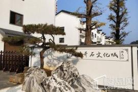 中国观赏石博览园