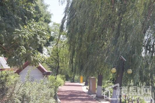 秀水名邸周边秀水公园