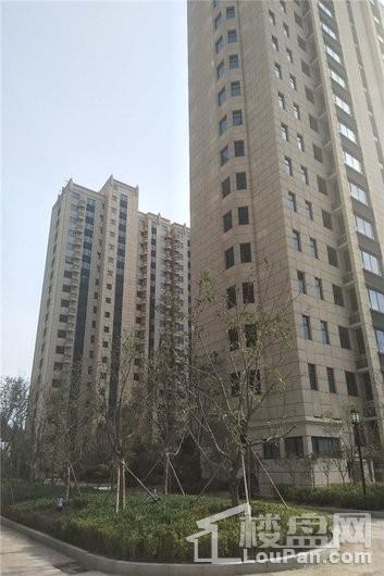 新合国际锦合园竣工楼栋局部
