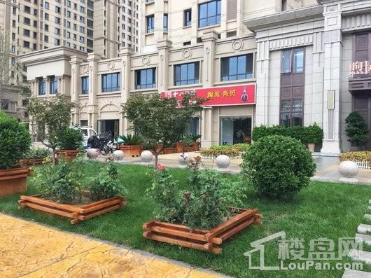 润江煦园示范区绿化