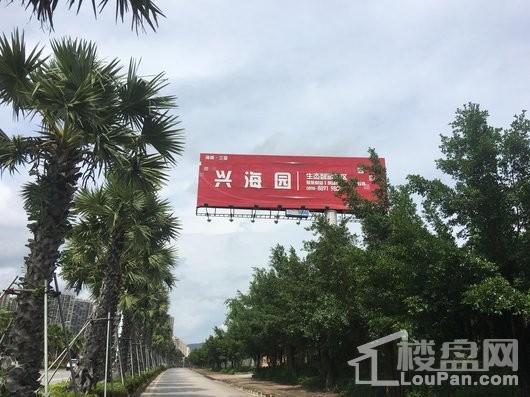 三亚兴海园实景图