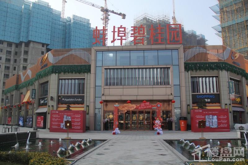 蚌埠碧桂园实景图
