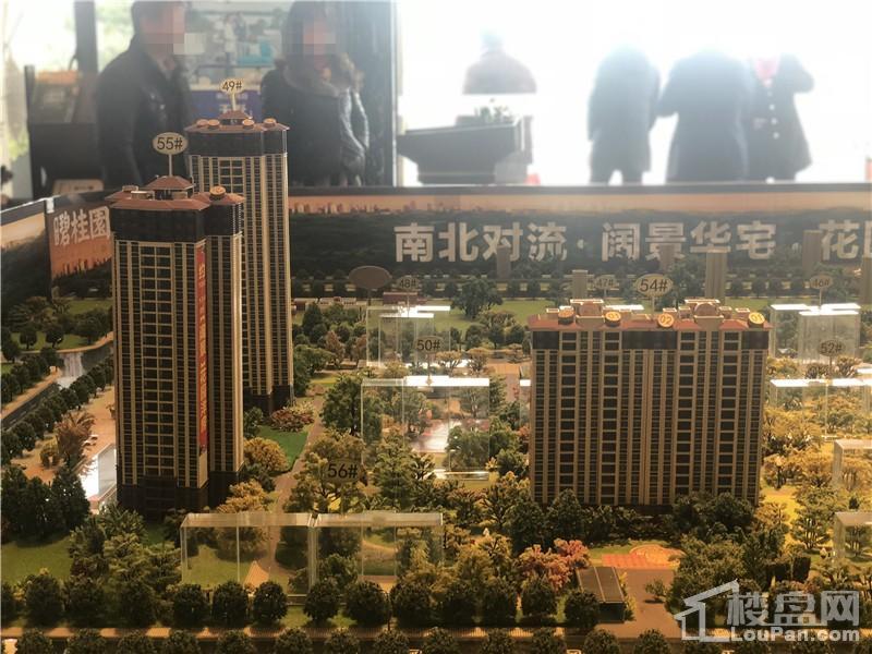 柳江碧桂园·公园上城实景图