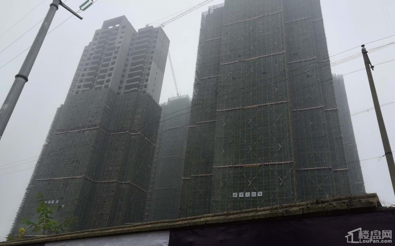 嘉宇·北部湾实景图