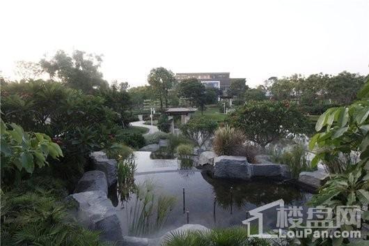 奥林匹克花园5期实景图