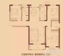 蓝葆湾55#、56#、61#C户型