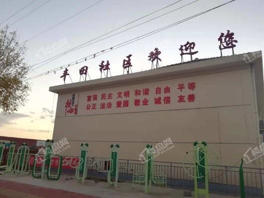 丰田旧村改造地块实景图
