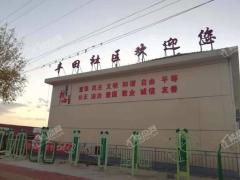 丰田旧村改造地块
