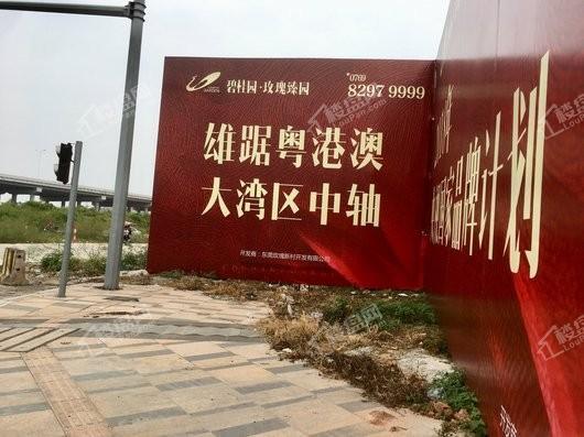 碧桂园·玫瑰臻园实景图