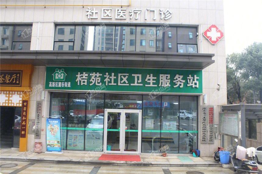 龙湖湘江星座配套图