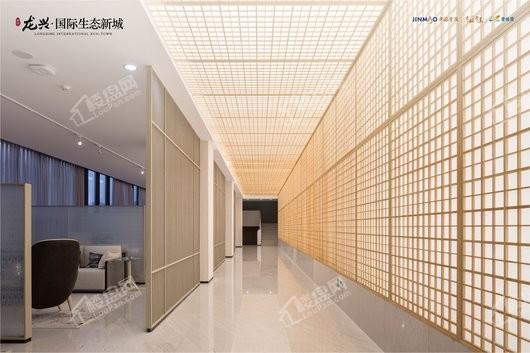 龙兴 · 国际生态新城实景图