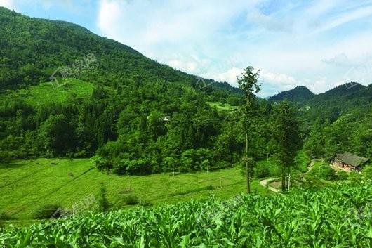 天湖国际度假中心实景图