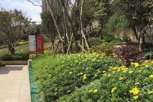 启迪协信重庆科技城实景图