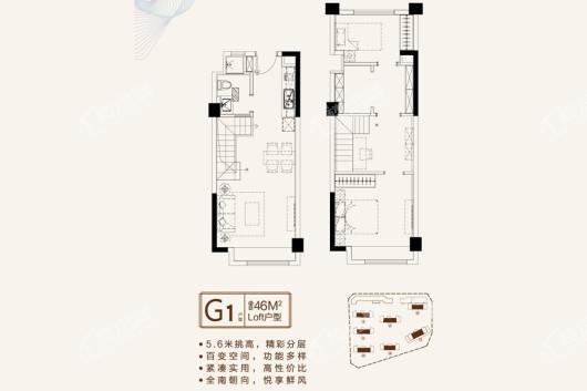 珍宝岛·领寓户型图