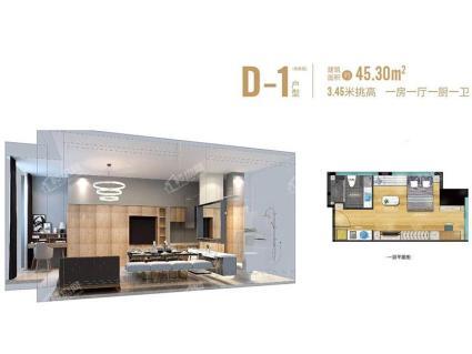 D-1 45.3平方米