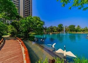 桂林桂林恒大城高清图