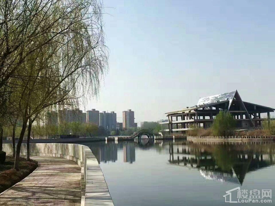 凤凰养生谷实景图
