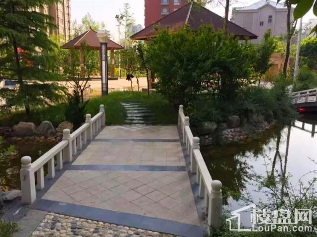 恺鑫·橄榄城实景图