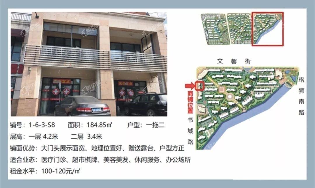 大华南湖公园世家商铺效果图