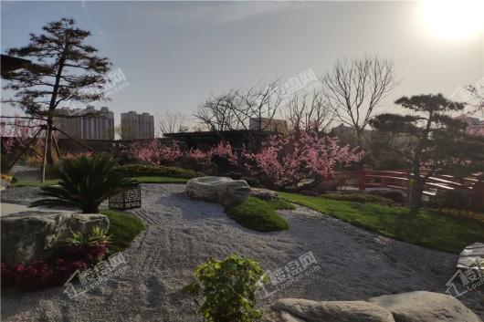 蓝光·雅居乐雍锦半岛