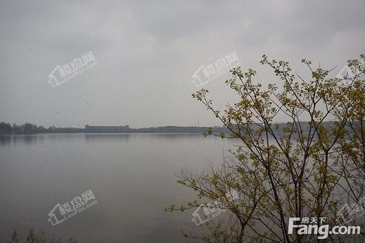 北大资源莲湖锦城周边紫菱湖