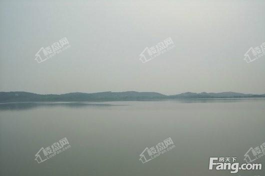 北大资源莲湖锦城周边紫菱湖面