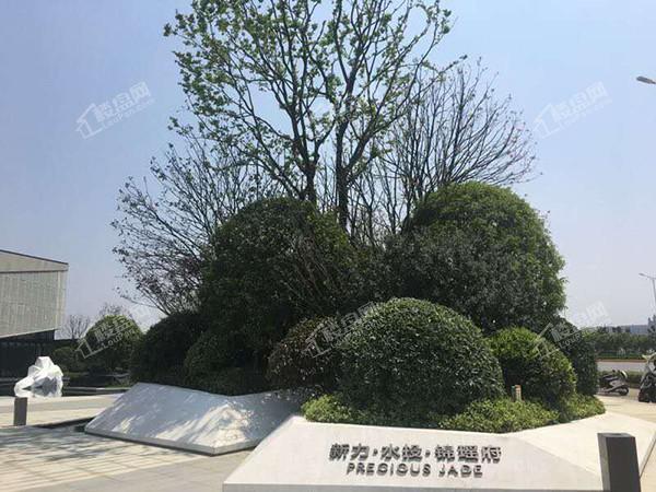 新力水投锦瑶府实景图