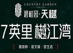 碧桂园·天樾