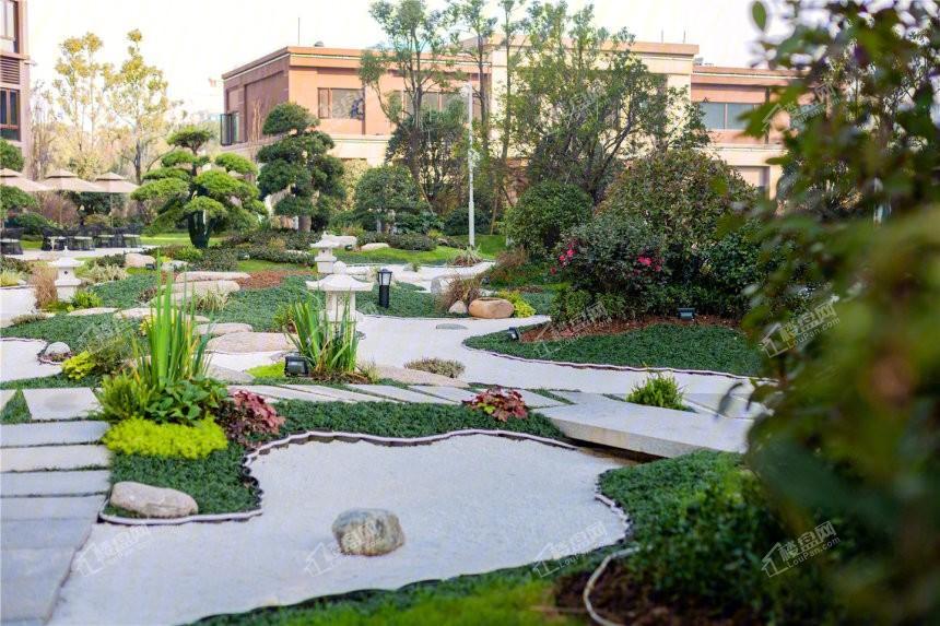碧桂园·御园实景图