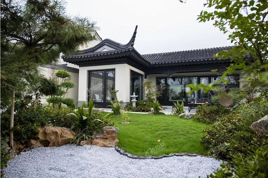 邓州蓝城桃李春风实景图