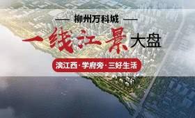 柳州万科城效果图