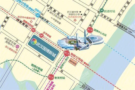 武汉国博新城位置图