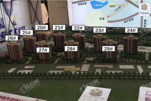 芦海鑫城实景图