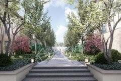 中海丽春湖墅实景图