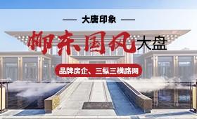 柳州大唐印象高清图