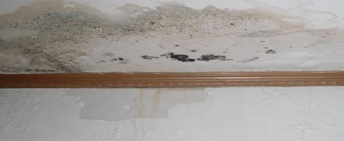 房顶漏水如何处理