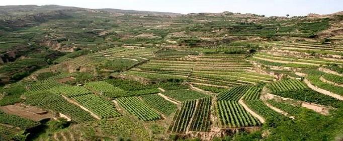 集体土地使用证的办理流程是什么