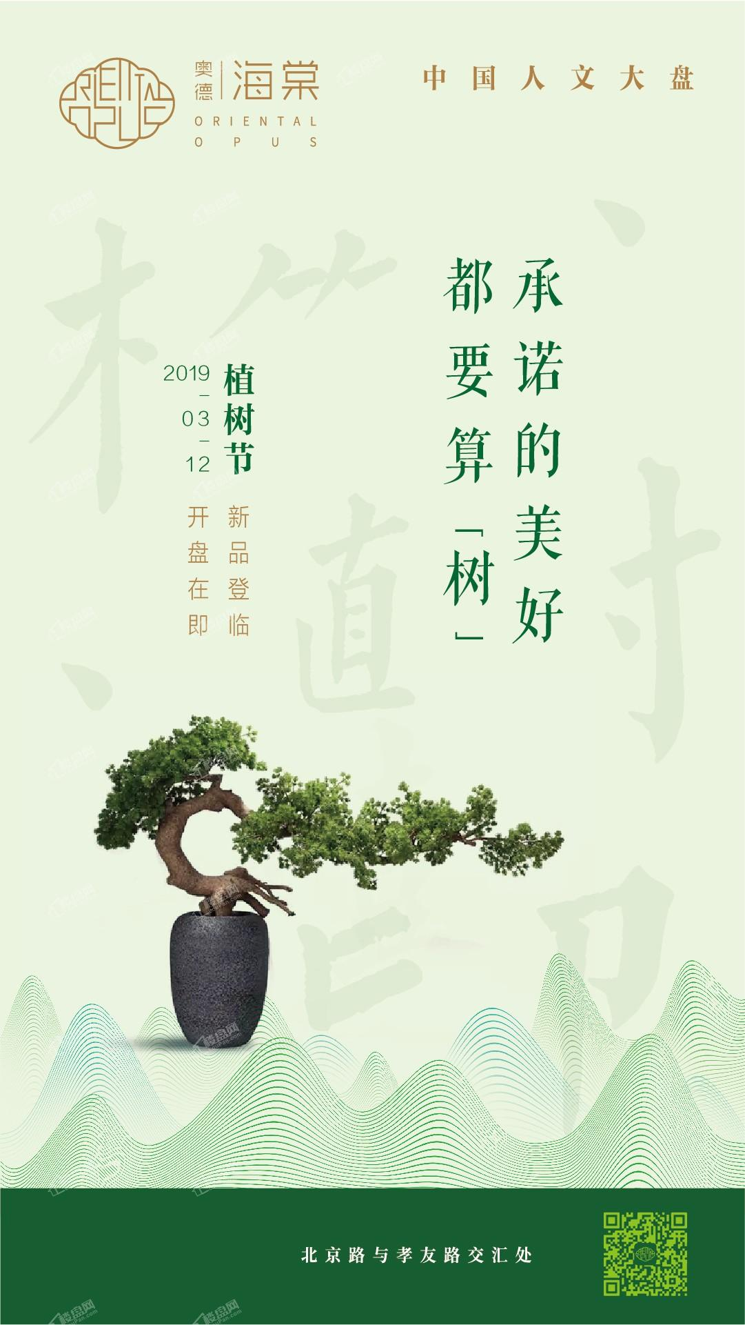 奥德海棠|植树节