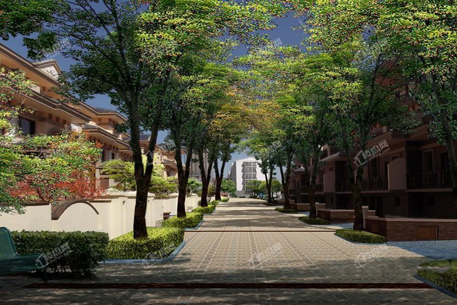 阳光国际城园区景观图