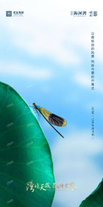 宏运海河湾:春的生机,唤醒夏的热烈
