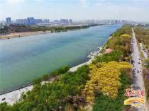 滹沱河生态修复工程进展顺利 沿线受益楼盘动态一览